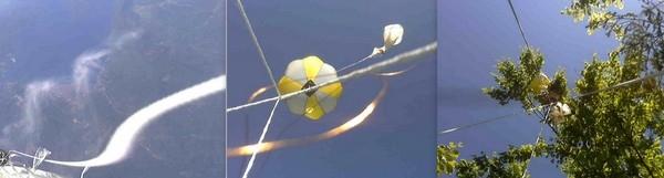 Balon kolaz 2